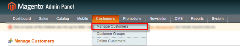 customers section magento