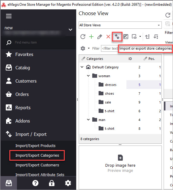 Import Export Categories with Store Manager